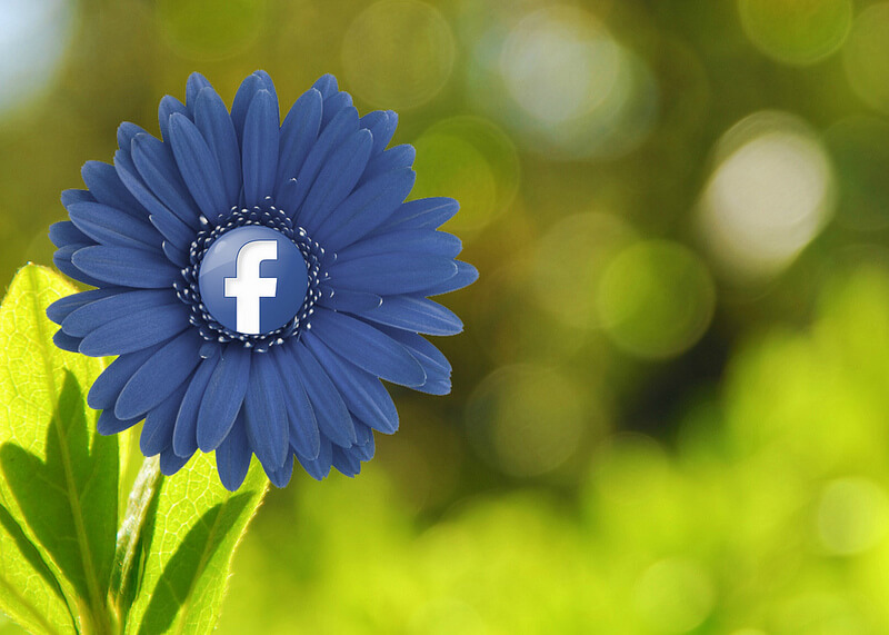 Content marketing en Facebook marketing